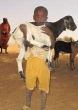 Boy holding his precious goat