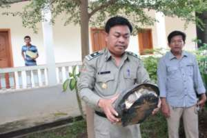 WRRT member rescues a turtle