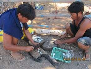 Busuanga fishermen process the day's catch
