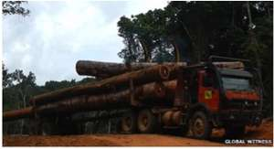truck with logs.jpg