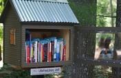 Public Mini-libraries