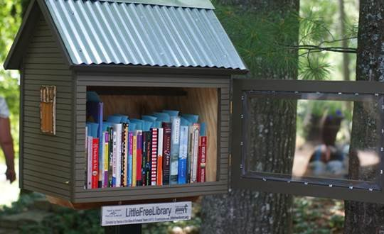 Public Mini-libraries