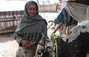 Livelihoods for Women Widowed by the Earthquake