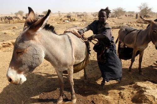 Providing Access to Water for Families in Niger