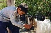 Support for goat farmers in Santiago del Estero