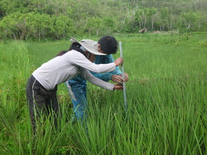 husband and wife taking data on rice