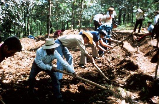 Campesinos digging a contour terrace