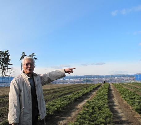 Mr. Sasaki giving explanation on pine seedlings
