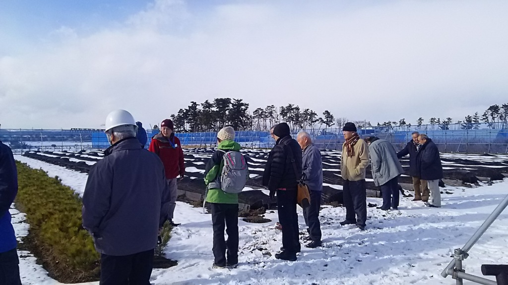 Locals of Natori City visiting the project nursery