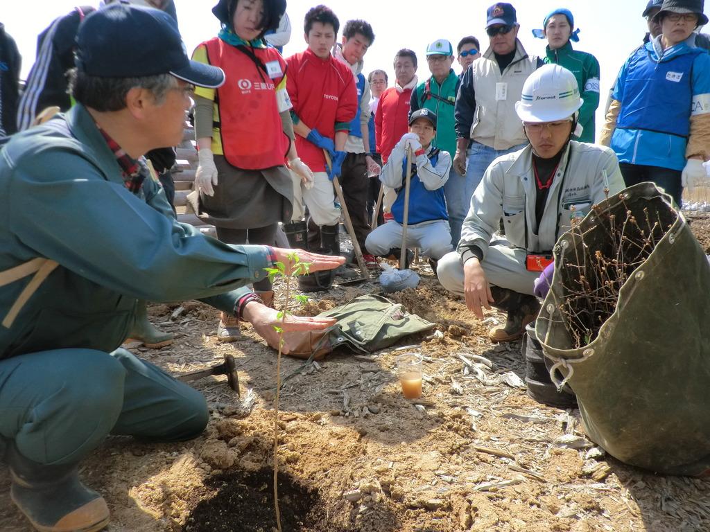 Volunteers help in the project
