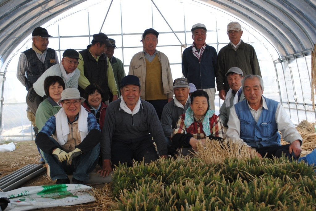 The tsunami survivors inside the greenhouse