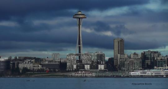 Transients in Seattle 1-13 by Alisa Lemire Brooks