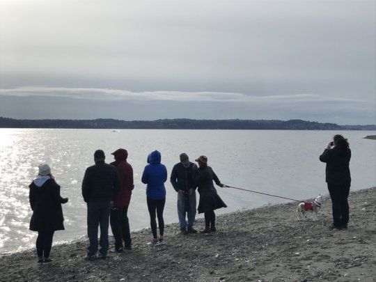 Nov. whale watchers, Vashon Isl A. Lemire Brooks