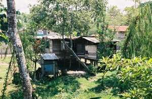 Typical House in Waspam