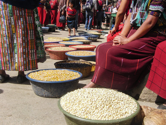 Market Maize