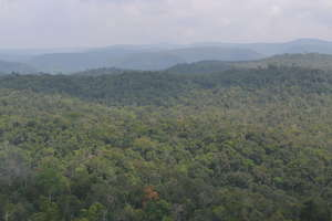 The Southern Cardamom Mountains