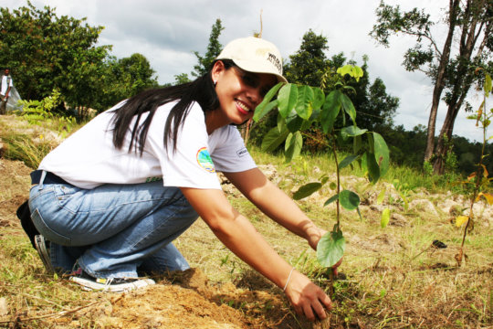 Planting Trees in Koh Kong