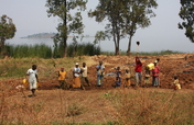 Empower Students with School Garden in DR Congo