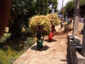 Women Crop Load