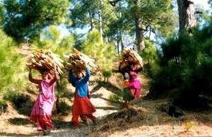 Women Fuelwood Load