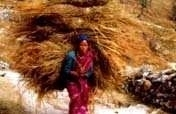 Empower 2,000 women in the Rural Himalayas