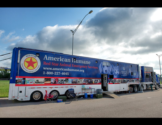 Aid for animal victims of the Oklahoma tornadoes