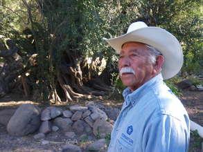 Jose Lino Bastida & of 300 year old olive tree