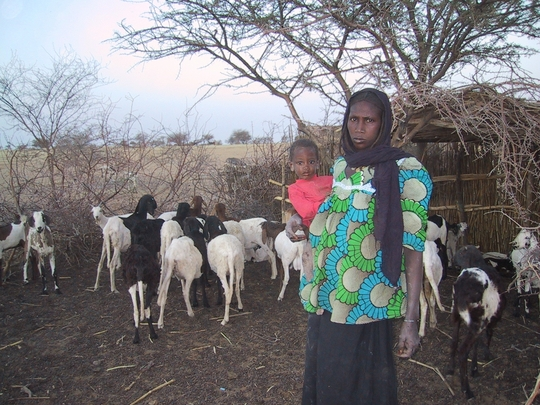 Mother and child with goats