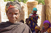 Combating Hunger via Livestock for Families, Niger