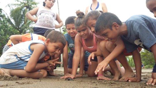 Grupo Los Pumas
