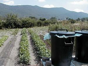 Rural Family Nutrition Initiative in Zimbabwe