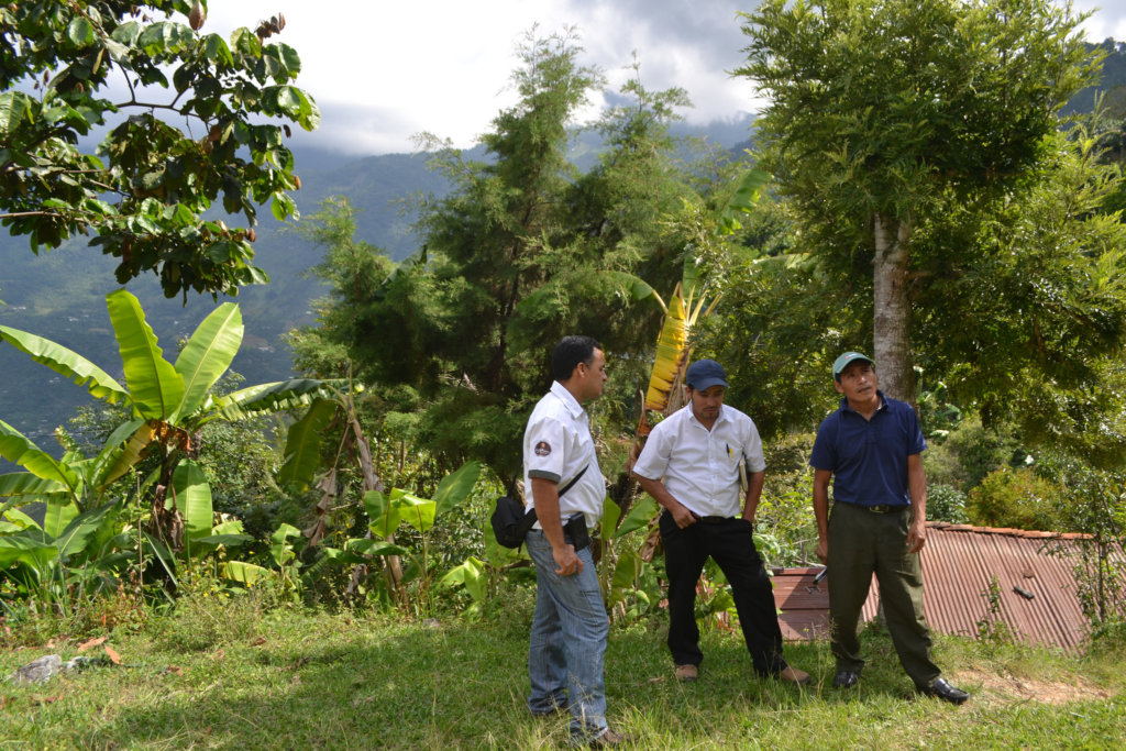 Investigating sites for the Huehuetenango apiary