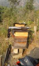 The current apiary size, before the expansion