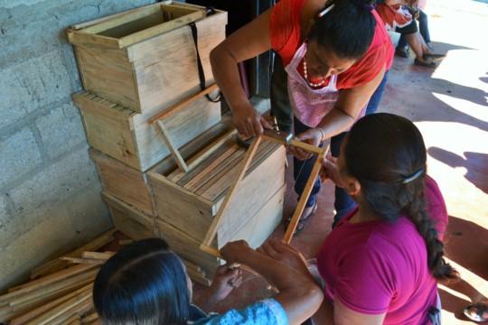 Building honey superboxes