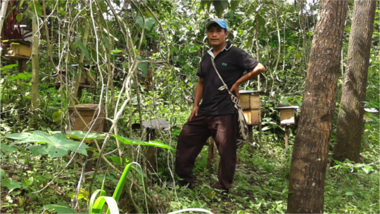 Genaro with the melipona hives