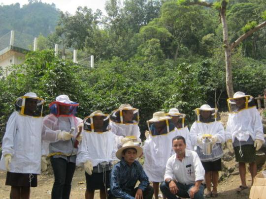 Beekeepers in Huehuetenango