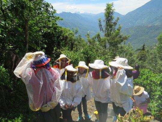 Peacework team visiting the apiary