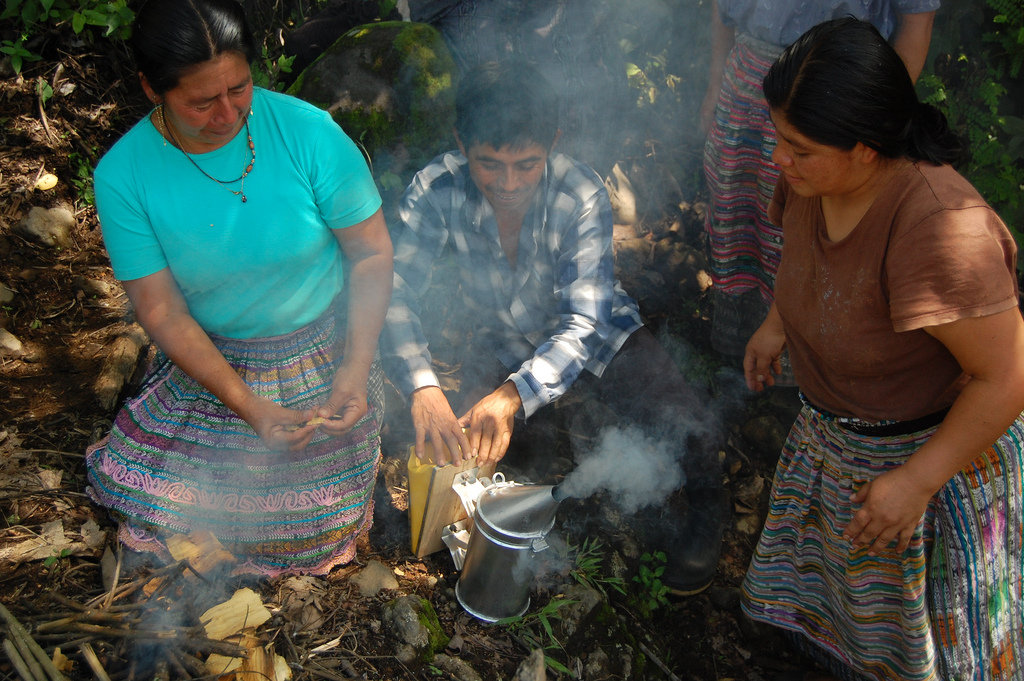 Empower Coffee Farming Families through Beekeeping