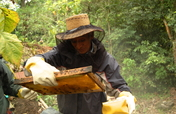 Support Sustainable Livelihoods in Rural Guatemala