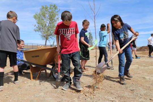 Coyote Springs Elementary in Prescott Valley, AZ