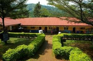 AAH primary school