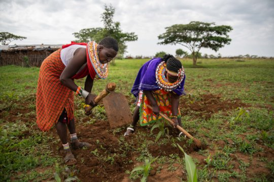 Women digging farms to provide food.