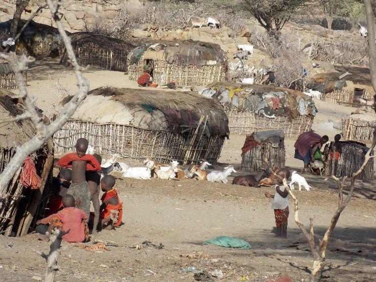 A typical traditional Samburu manyatta