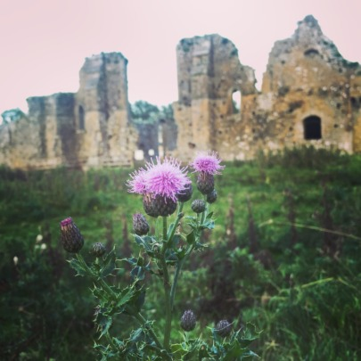 Ancient abbey crumbling in the fields
