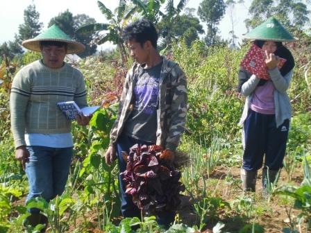 Observing organic farming methods