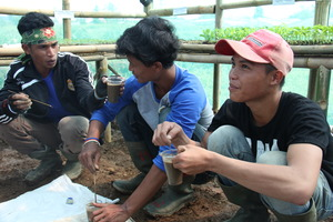 With other advanced students testing soil pH