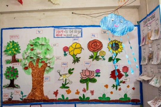 Theme on display - Trees, Plants & Flowers