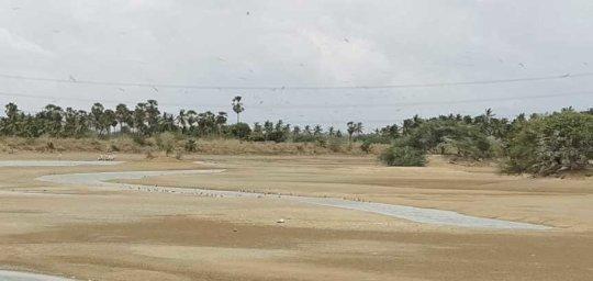 15082019-Koonthakulam-Bird-Sanctuary-3