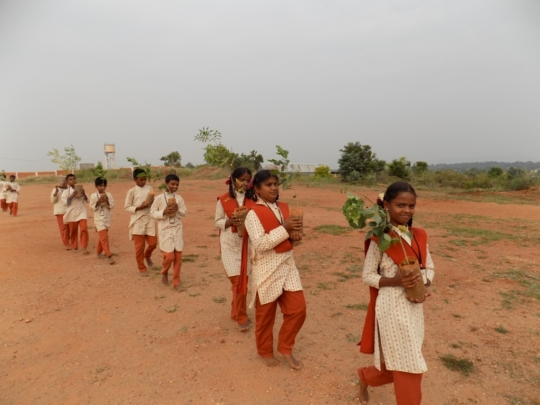 Children on their way to sapling planting