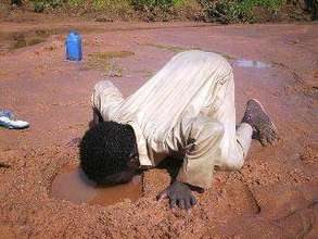 Child Drinking Water from the Ground